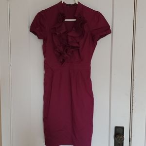 The Limited Ruffle Front Dress